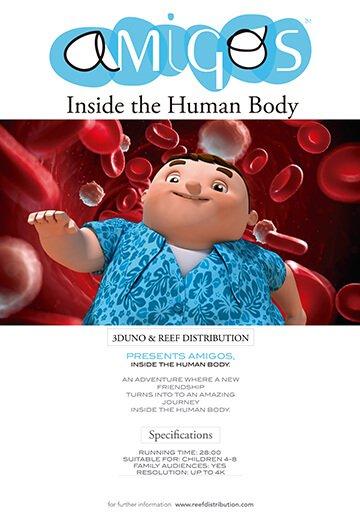 draugai žmogaus kūno viduje